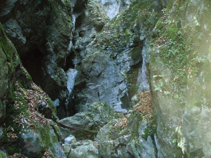 081215.滝洞.005.jpg