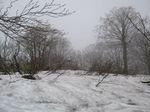 残り雪じゃ〜!