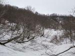 雪の谷すじ
