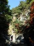 東ノ川 奥西ノ谷_161113_085217_05.JPG