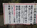 H21.05.16N〜17 公門谷右俣003.jpg