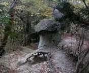 takuyu-2005-11-15T00_06_59-3.jpg