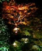 image/takuyu-2005-11-22T06:40:26-5.jpg