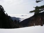 標高554地点からの雲海