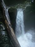 流木のかかる滝