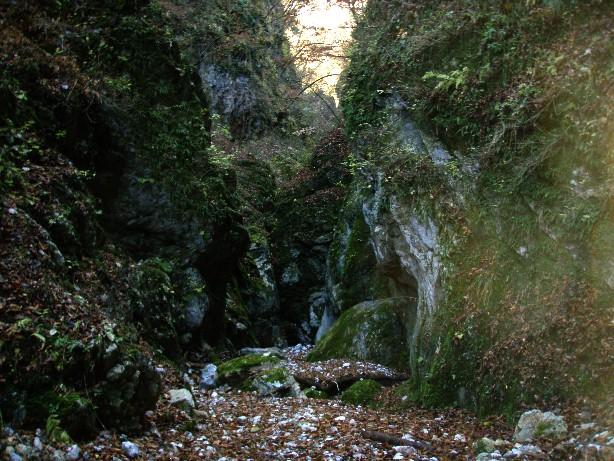 081215.滝洞.014.jpg