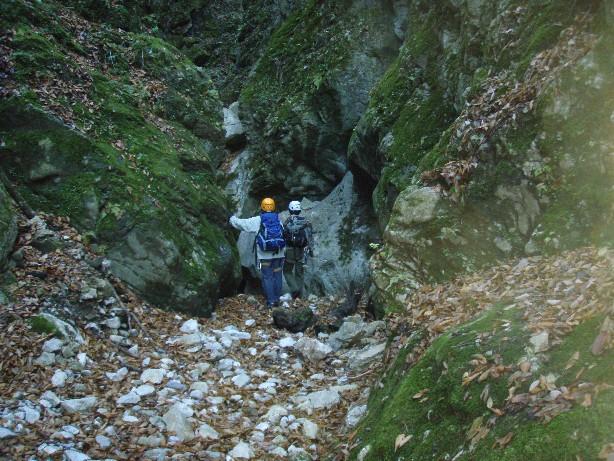 081215.滝洞,002.jpg