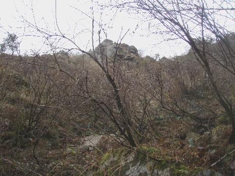 2008-12-01-tosi -007.jpg