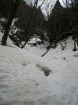 雪に閉ざされた百里沢