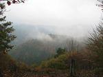 芦生 ハナノ谷段山2007.11.18 019.jpg
