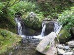 奥美濃、三国岳 045.jpg