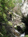 奥美濃、三国岳 051.jpg