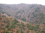 若狭 芦原山〜三国山 2006.11.26 007.jpg