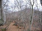 若狭 芦原山〜三国山 2006.11.26 110.jpg