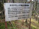 大峰 行者還岳、弥山、八経ガ岳 127.jpg