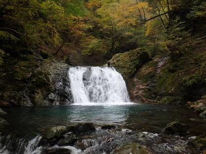 西ノ谷(上部)_191027_105857_13.JPG