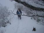 樹氷の森を歩く